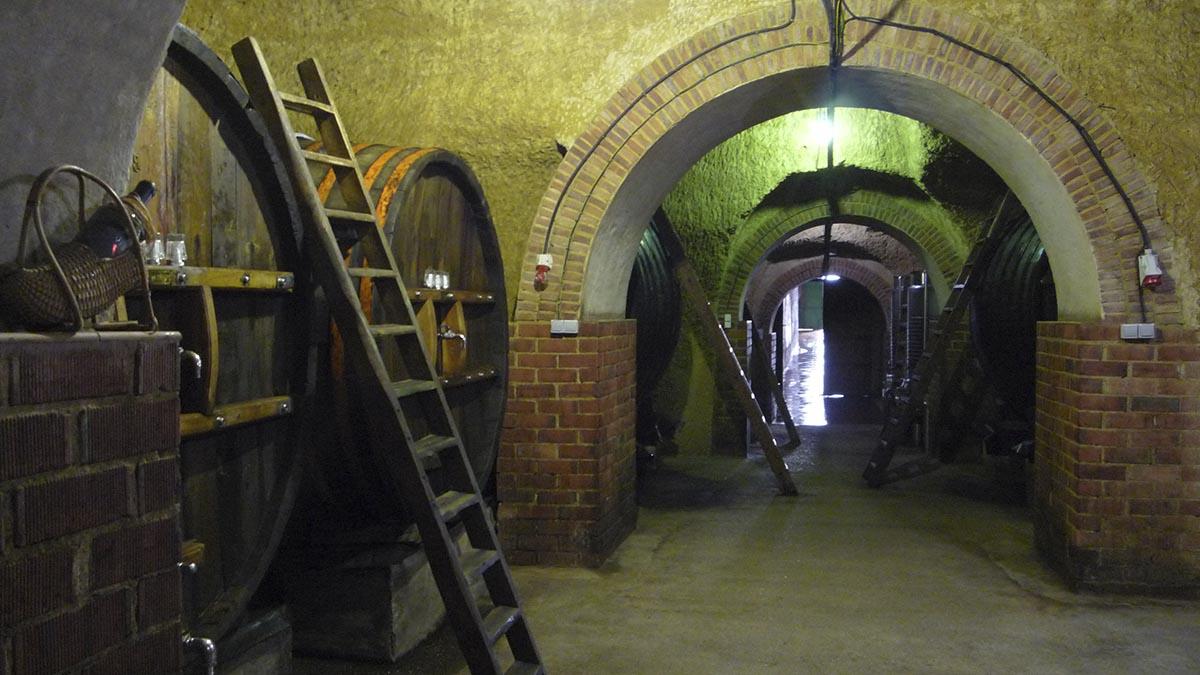 Cómo guardar el vino