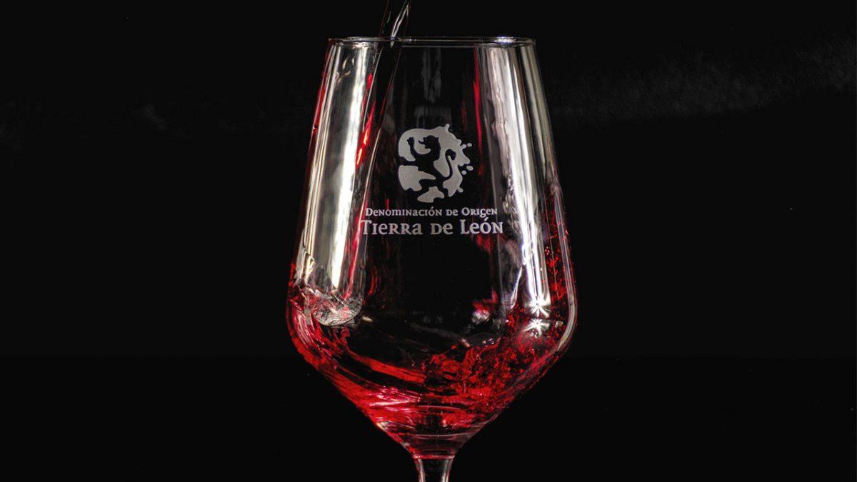 DO Tierra de León alcanza un 5,4% de cuota en el mercado de los rosados