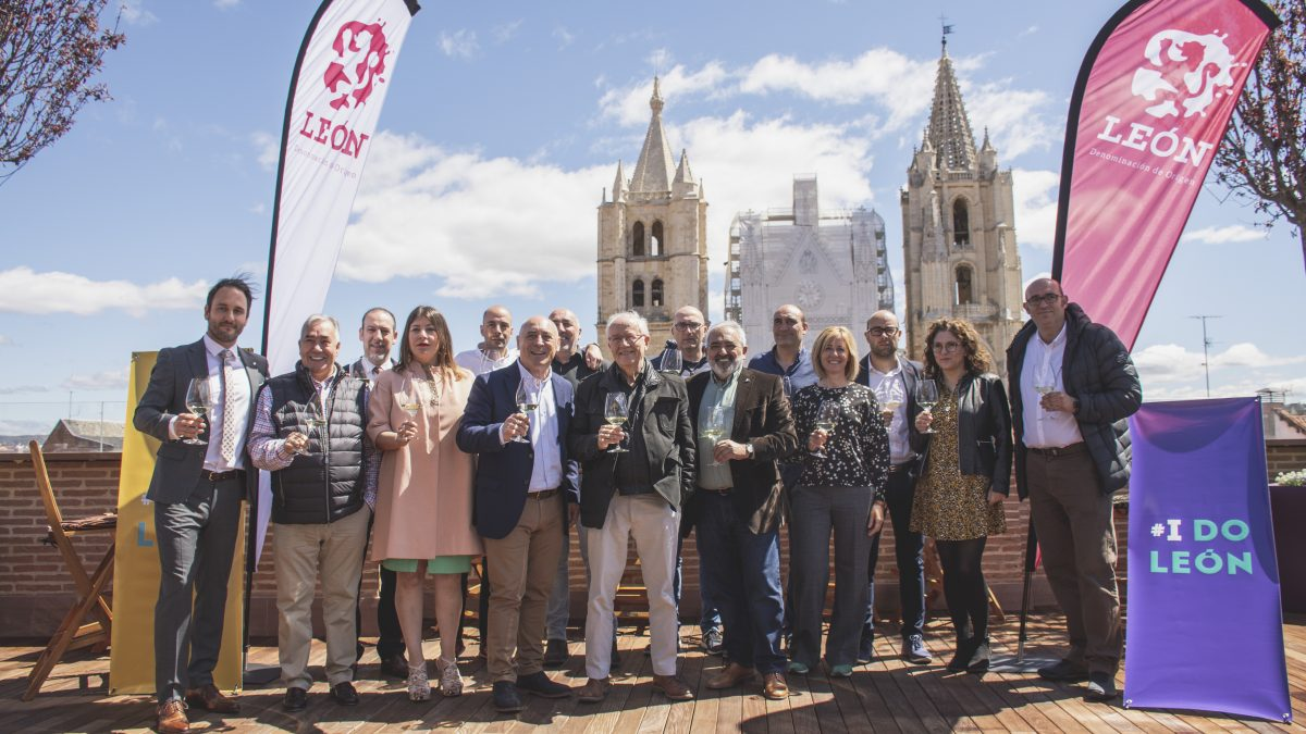 """The wines of the 2018 vintage of the DO León reach the rating of """"excellent"""""""