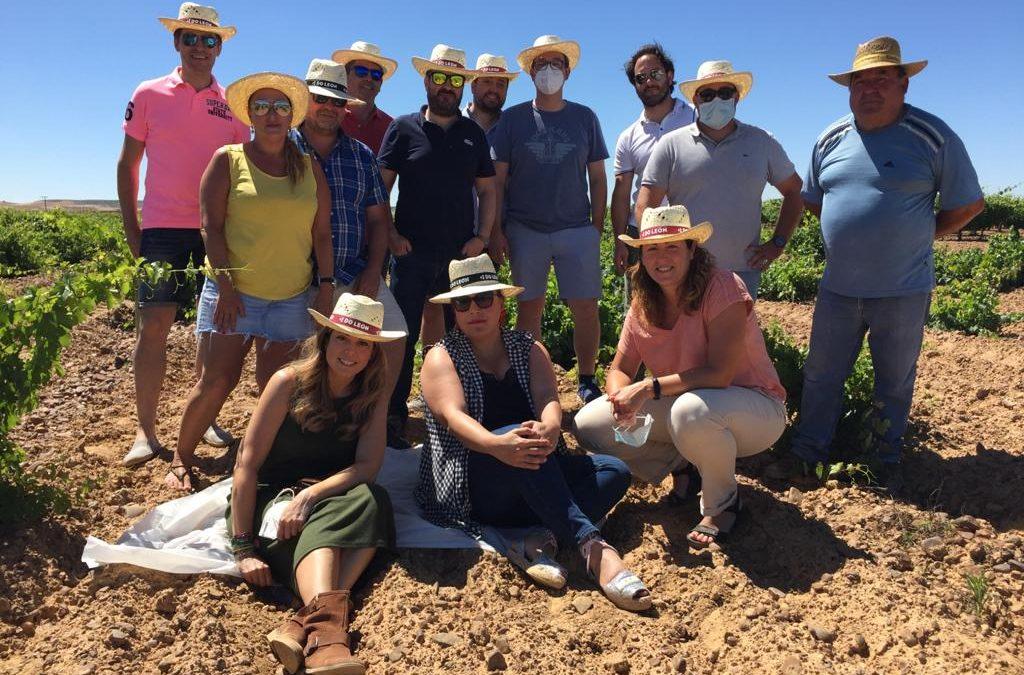 La DO León muestra a Asturias el viñedo y el potencial de sus vinos