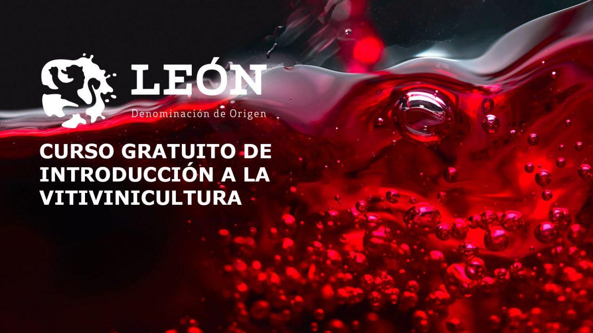 La Denominación de Origen León y la Cámara de Comercio imparten un curso gratuito de vitivinicultura